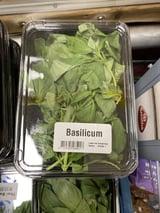 Basilicum Bakje Verse Kruiden