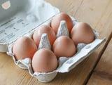 Verse Eieren 6 stuks