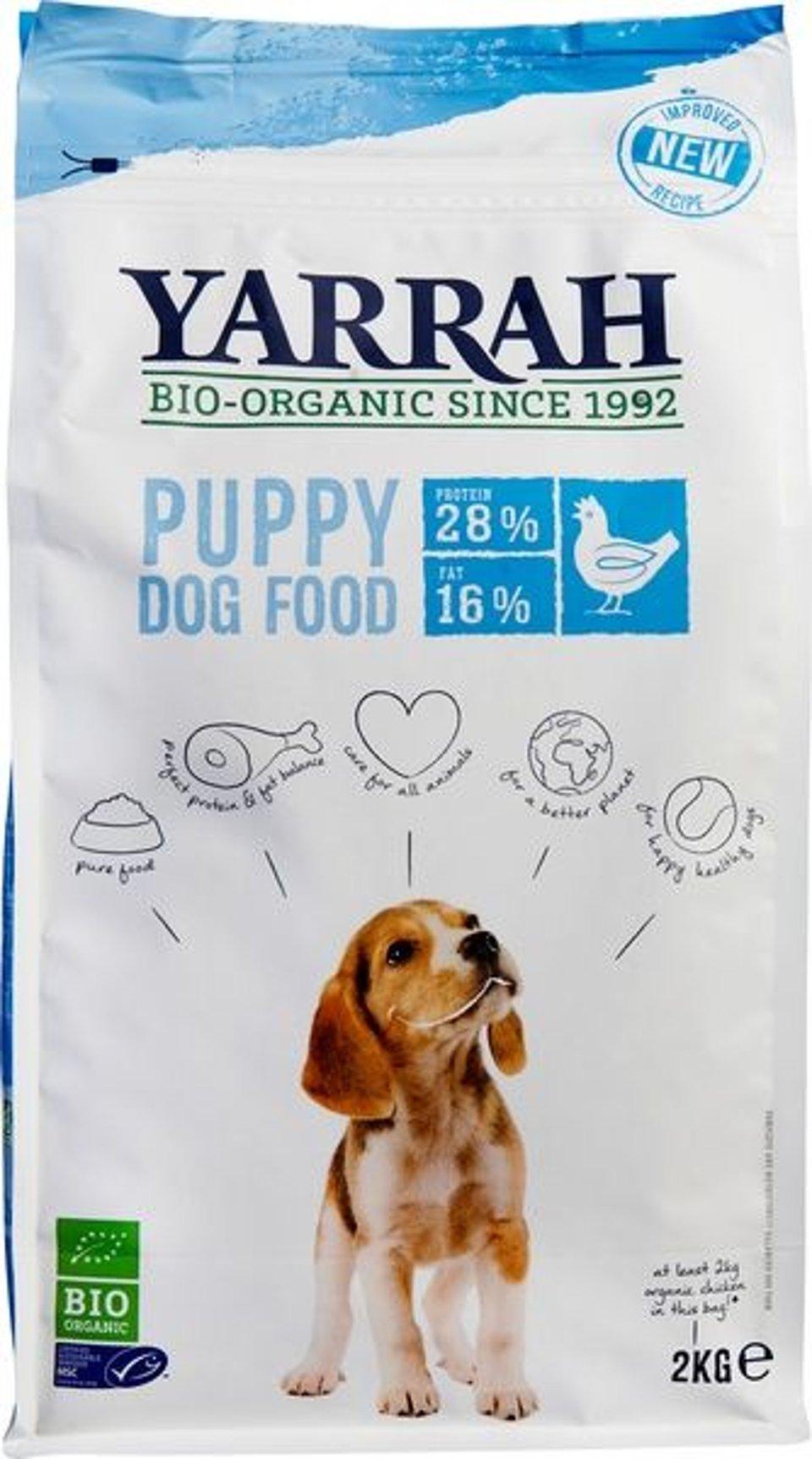 Hond Brokjes Kip Puppy